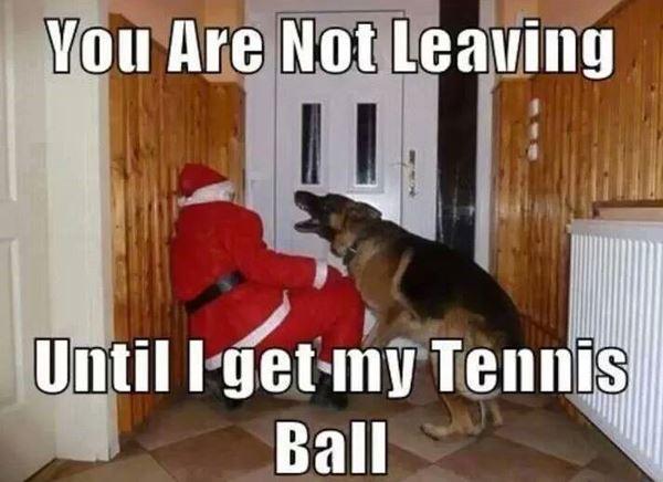 Christmas Meme 13