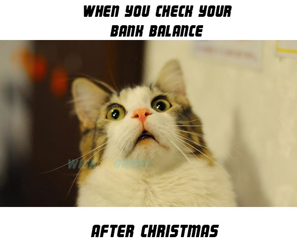 Christmas Meme 20