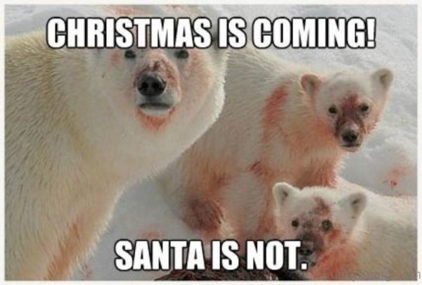Christmas Meme 21